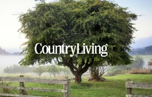 Best Country Living House Plans