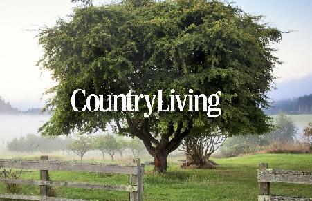 Cottage Living House Plans