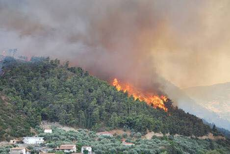 Causes of Forest Fires in Uttarakhand
