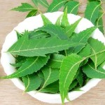 How can Neem be Used in Treating Dandruff