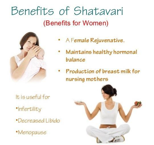 How can we use shatavari