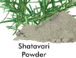 Herb Shatavari Powder