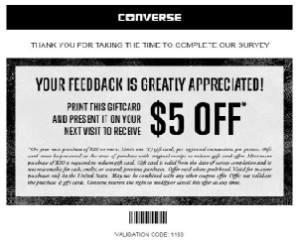 Nike Converse Store Survey