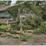 Irma Aftermath: Humanitarian crisis in Florida