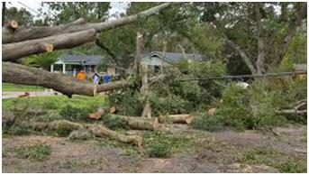 Irma aftermath Florida