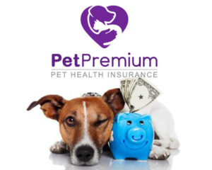 PetPremium login Pet Insurance Review