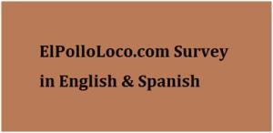 Elpolloloco-com Survey