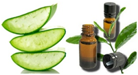 Tea Tree Oil & Aloe Vera Gel